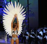 th_10210_Selita_Ebanks_2008_Victorias_Secret_Fashion_Show_Runway_03_122_196lo.jpg