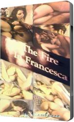 th 950578155 tduid300079 FireinFrancesca 123 224lo Fire in Francesca