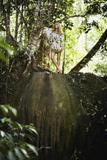 Gianne Albertoni Alessa Spring/Summer 2007 in Rio Foto 98 (Джанне Альбертони Алесса Весна / Лето 2007 в Рио - Фото 98)